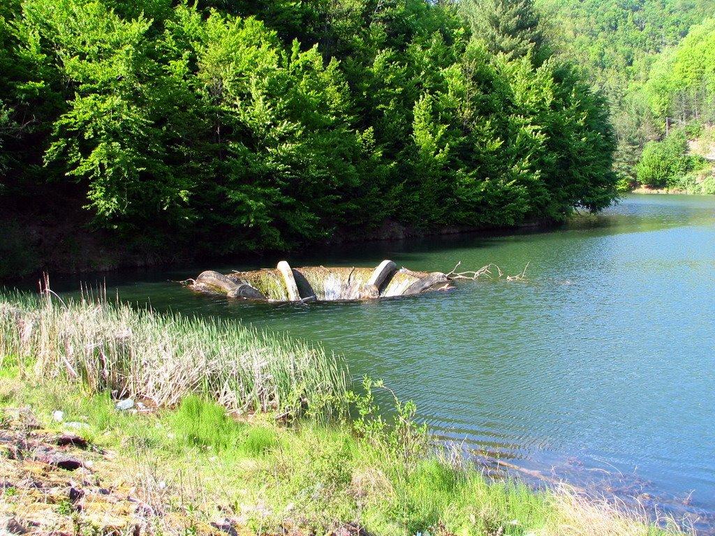 Lacul Vida 1