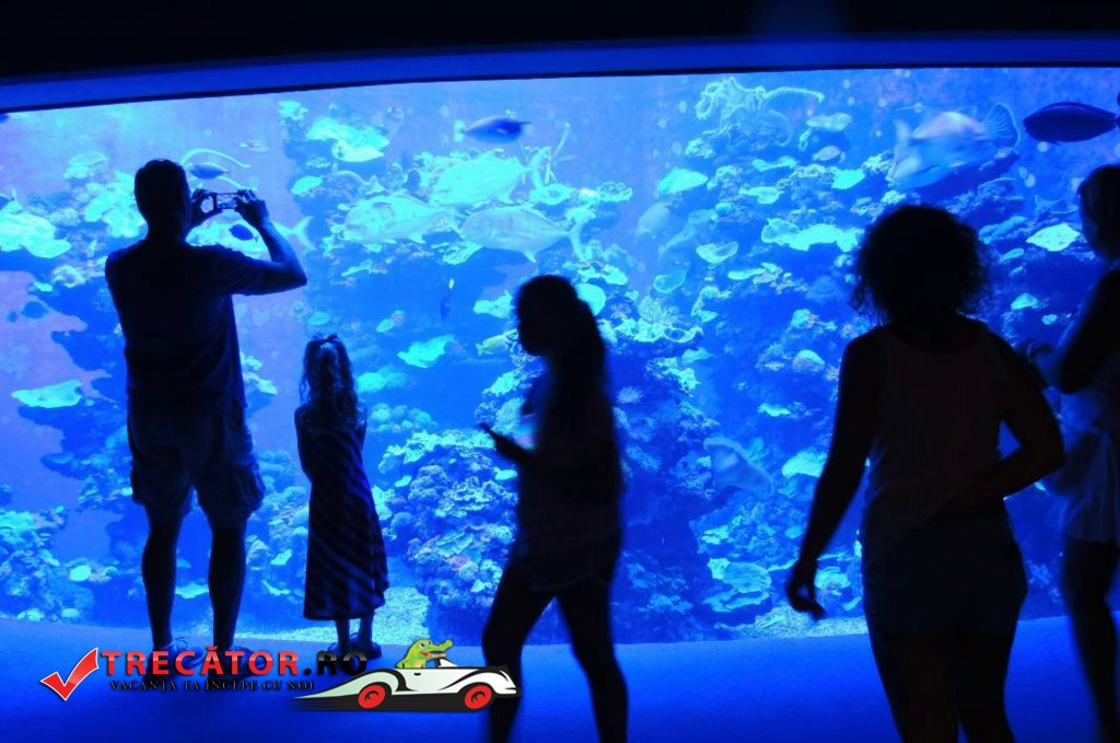 Acvariul din Antalya