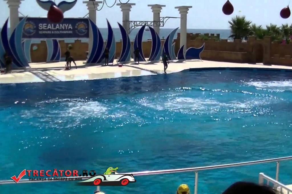 Parcul acvatic Sealanya 3