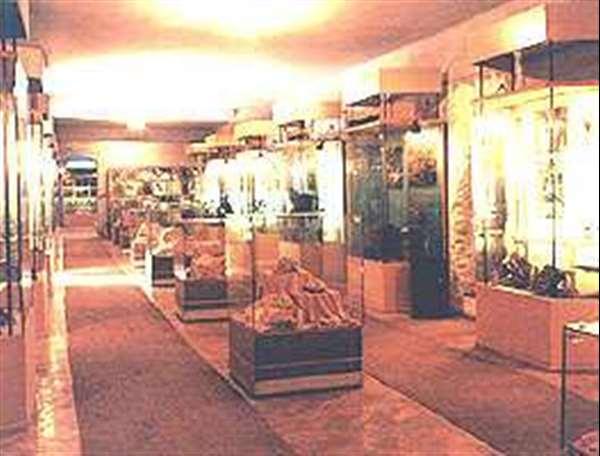 Complexul Muzeal Arad 1