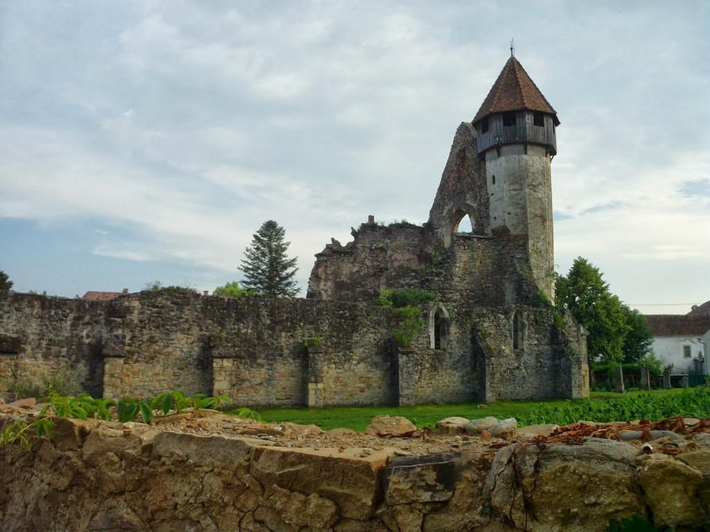 Mănăstirea Cârța 2