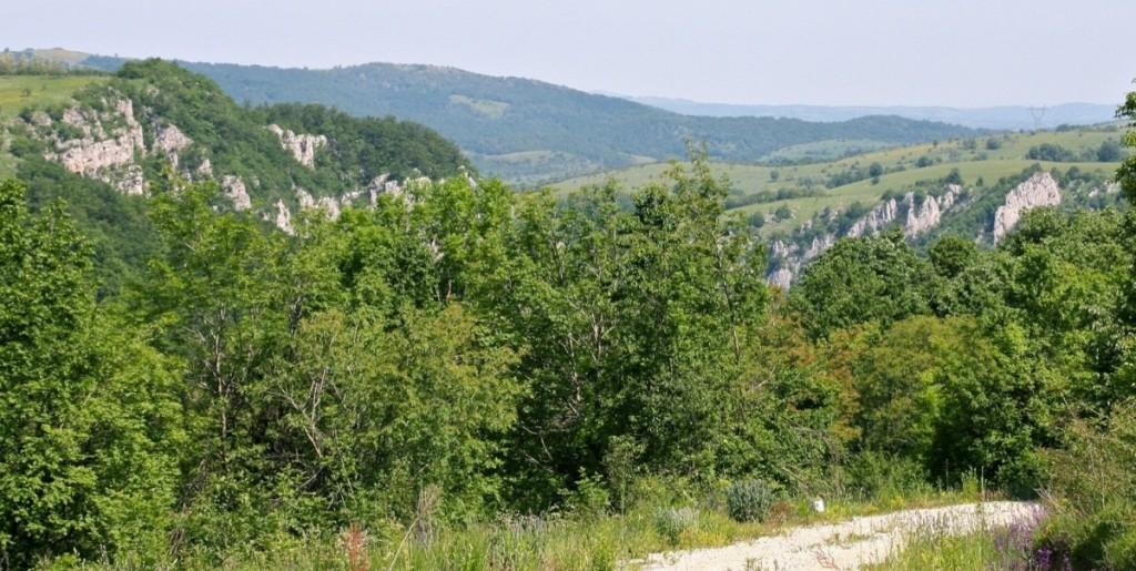 Parcul National Semenic Cheile Carasului 4