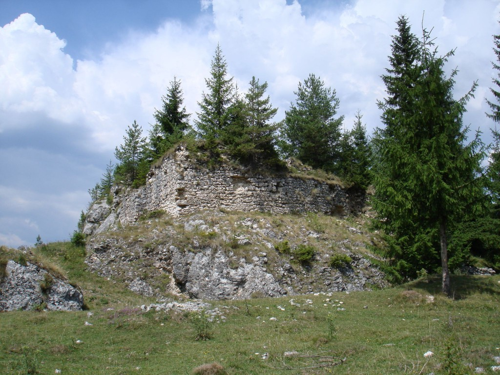 Ruinele Cetatii Oratia 3