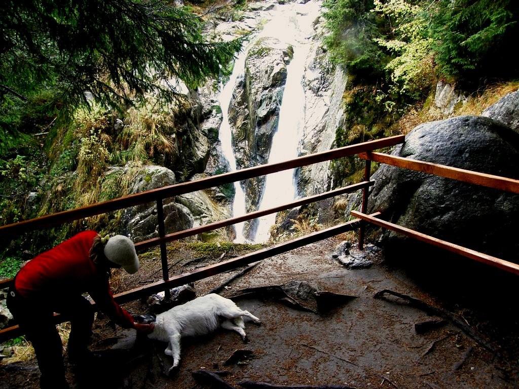 Cascada Lolaia 2