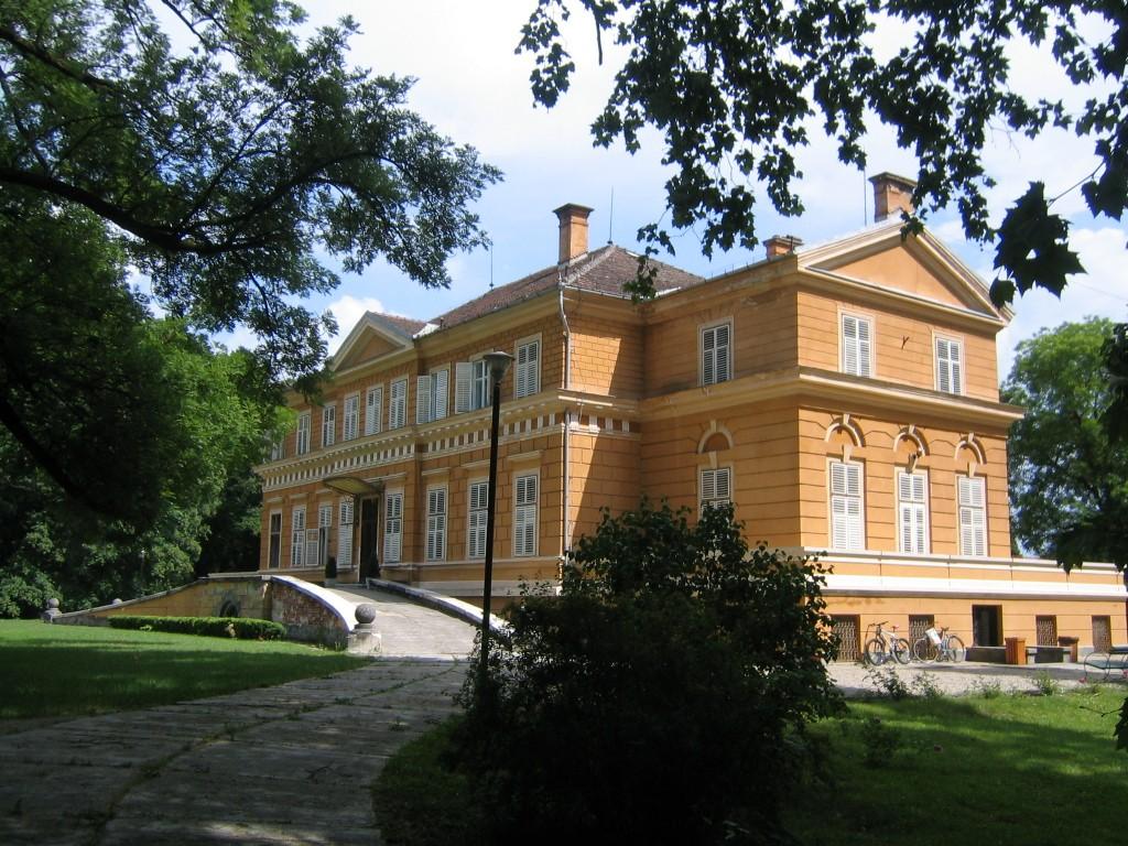 Castelului Regal de la Savarsin