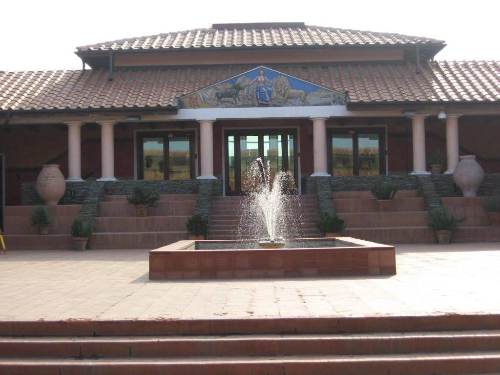 Muzeul Viminacium 2