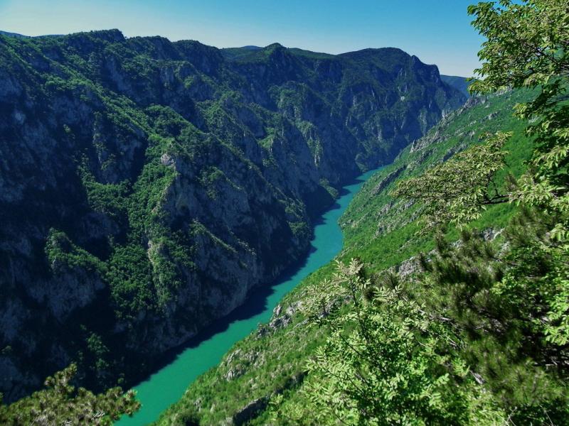 Parcul Național Tara 3
