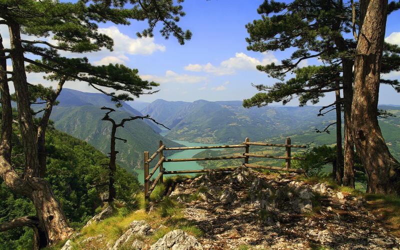 Parcul Național Tara