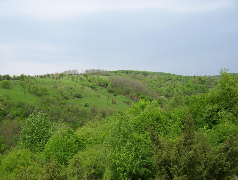 Parcul național Fruska Gora 1