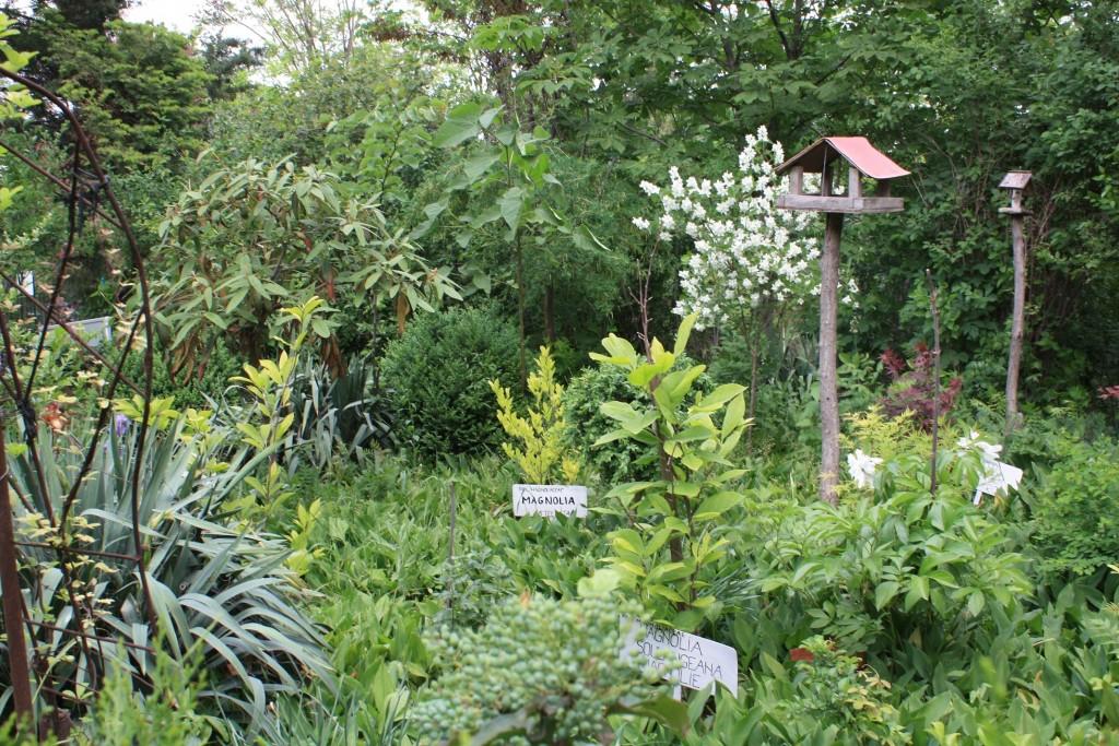 Gradina Botanica a Palatului Copiilor Tulcea
