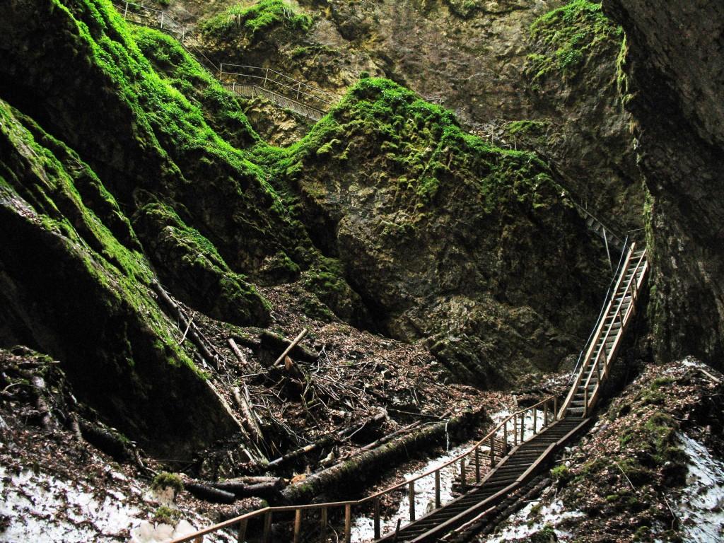 Peștera Ghețarul Scărișoara