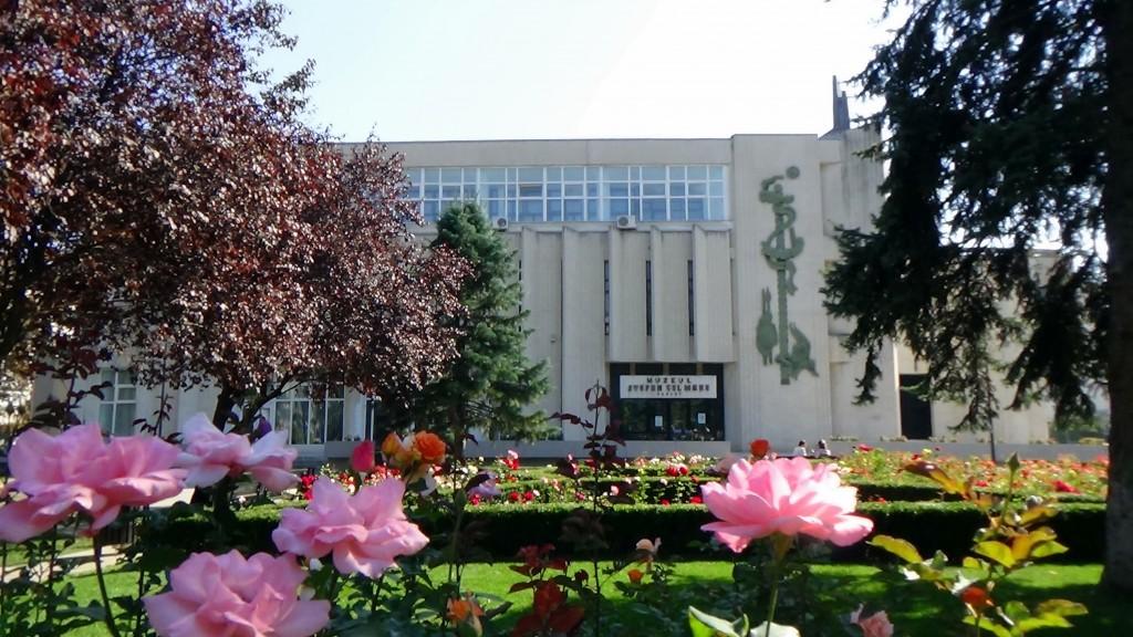 Muzeul Judetean Vaslui 2