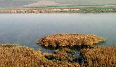 Rezervatia-naturala-Lacul-Traian
