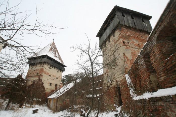 Cetatea Alma Vii 1