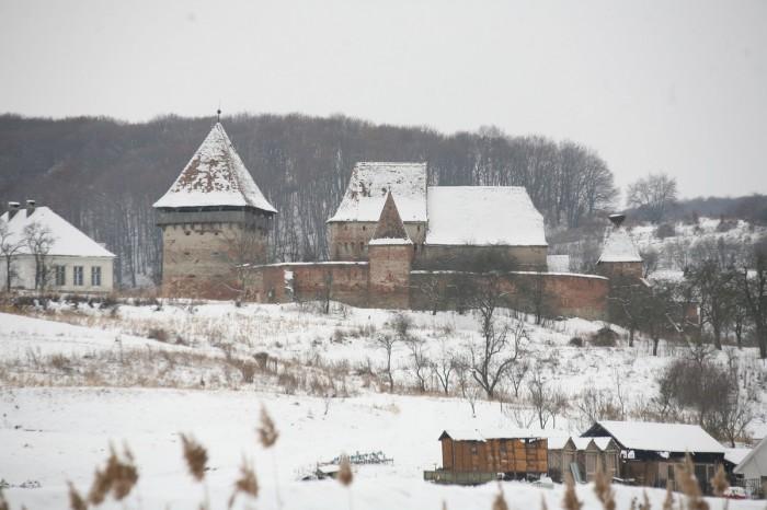 Cetatea Alma Vii