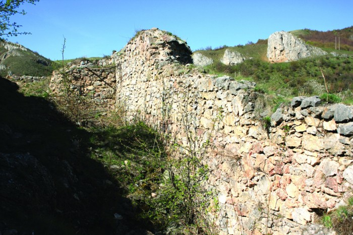 Cetatea Liteni 1