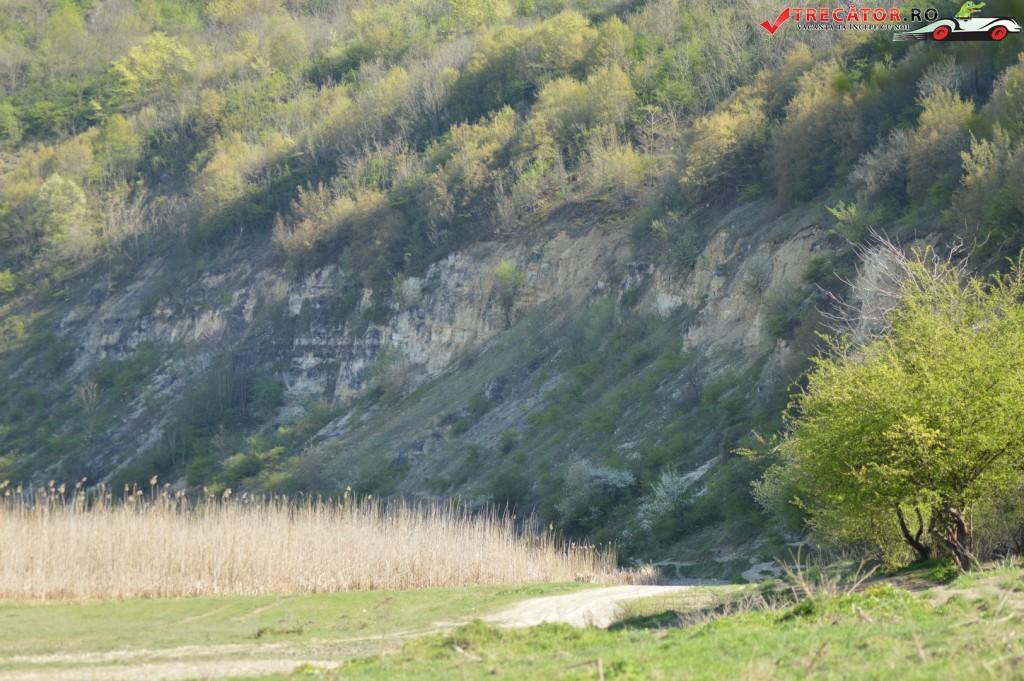 Locul fosilifer Aliman 66