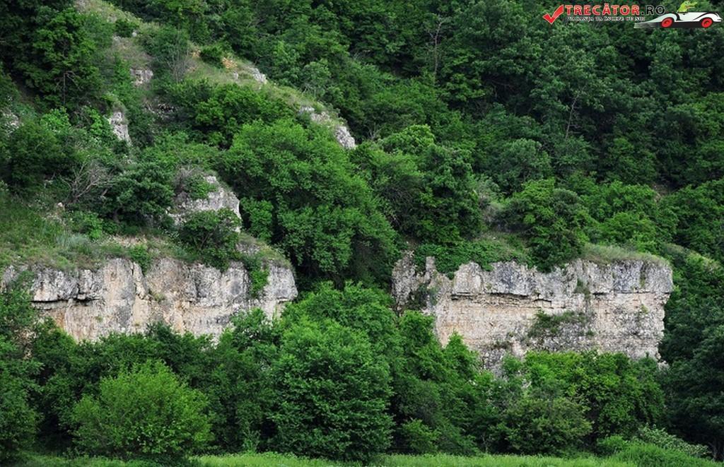 Rezervatia Canaraua Fetii 4