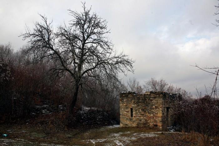 Ruinele Cetăţii Chioarului