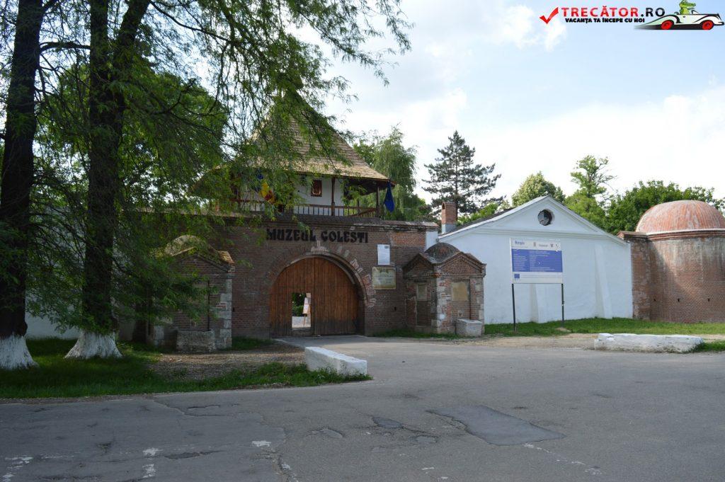 Muzeului Viticulturii şi Pomiculturii Goleşti 1