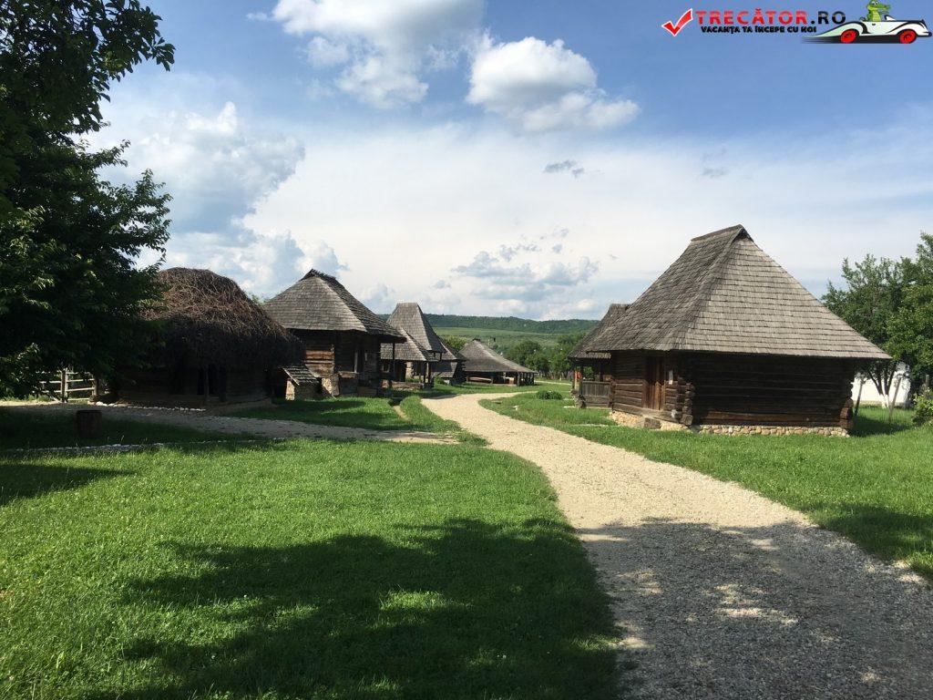 Muzeului Viticulturii şi Pomiculturii Goleşti 35