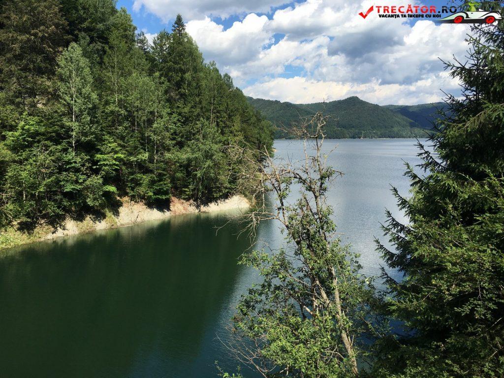 Lacul și barajul Vidraru 08