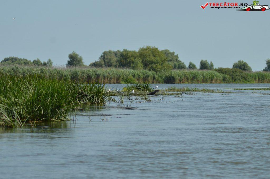 Rezervaţia Biosferei Delta Dunării Sulina 11