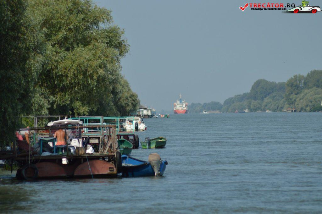 Satul Crișan Delta Dunării 16
