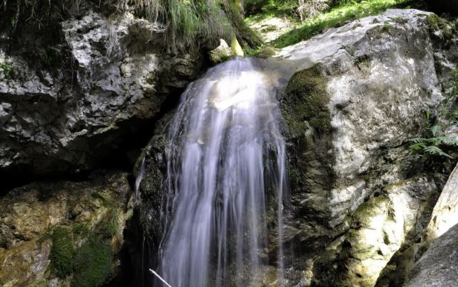 cascada tamita 2