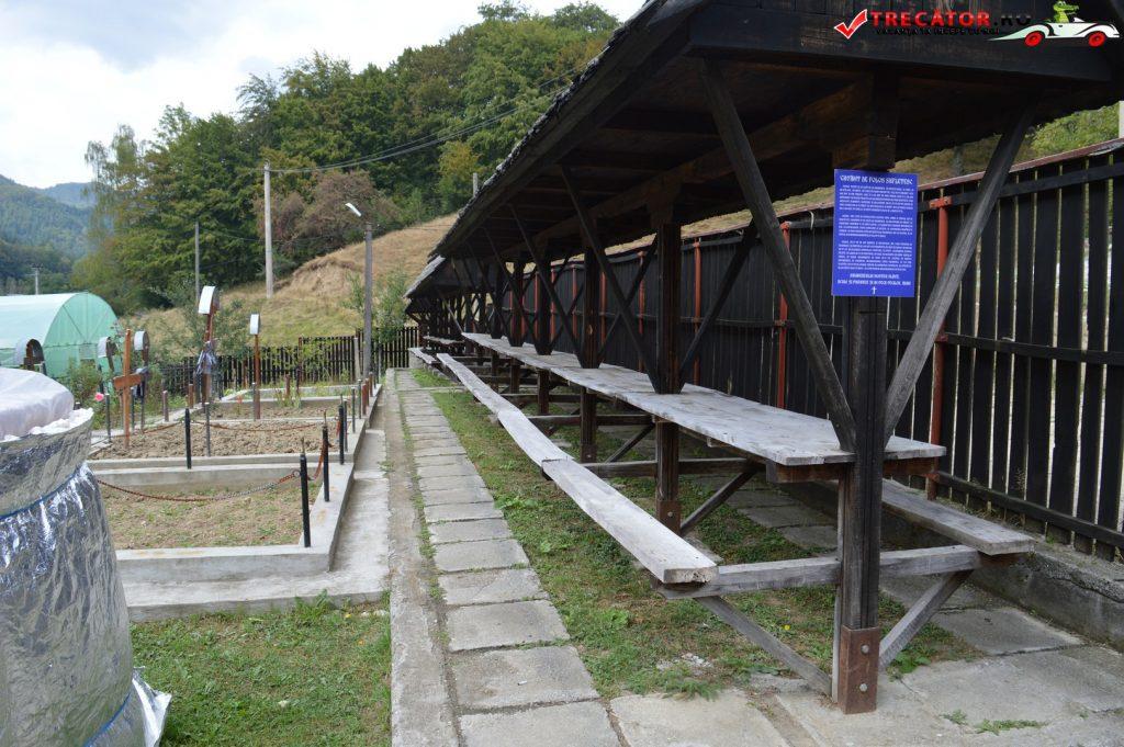 manastirea-comanca-14